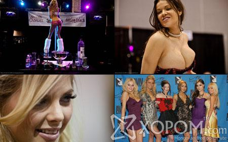 Порно-оскар AVN 2009 наадмын фото сурвалжлага [71 фото + 1 видео]