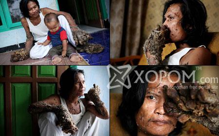Модон хүн Dede Koswara-гийн тухай фото мэдээлэл [15 фото]