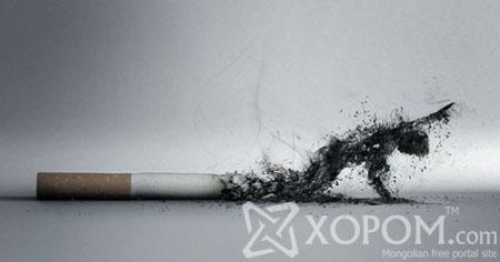 Тамхины эсрэг зар сурталчилгаанууд [55 фото]