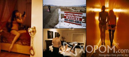 Невада мужид хуулиар хүлээн зөвшөөрөгдсөн эмсийн хүрээлэнгүүд ажилладаг [32 фото]