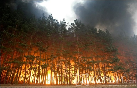 forest-fire-in-russia-2010