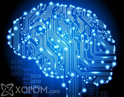 Уураг тархийг хордуулдаг хүнсний бүтээгдэхүүнүүд